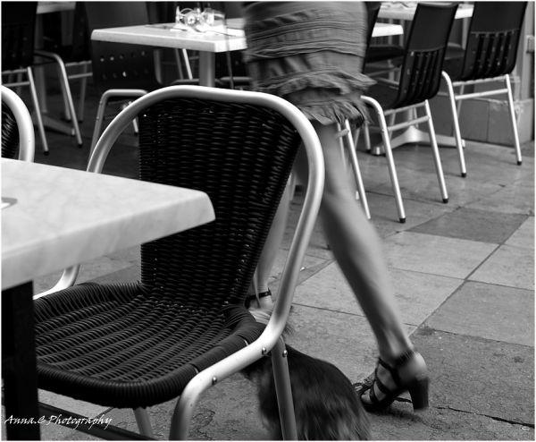 Les jambes des femmes sont des compas....