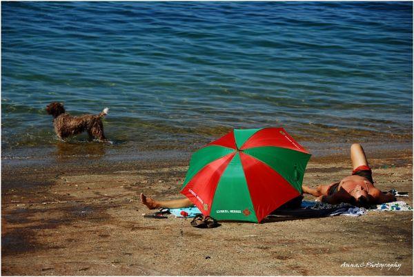 Vacances sous les couleurs basques