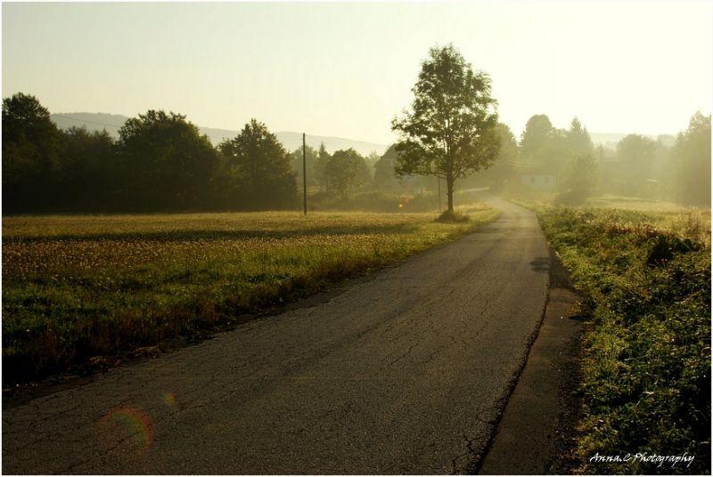 Petite route dans la brume de septembre