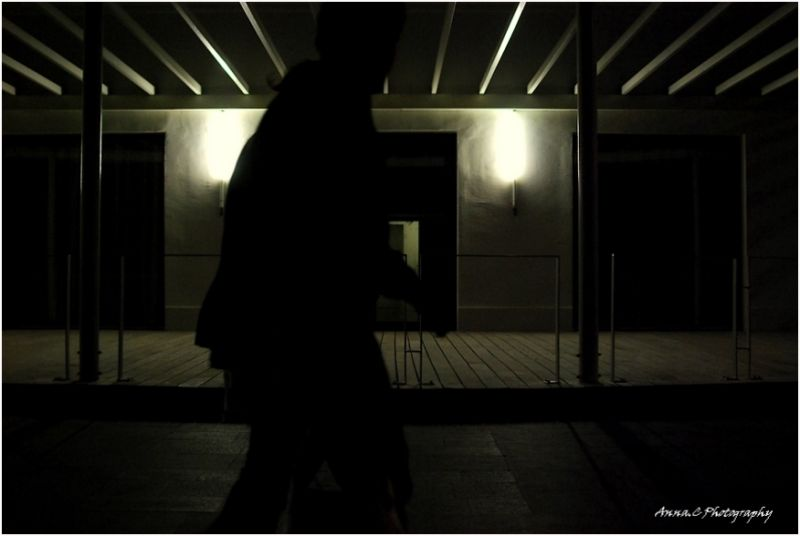 Fantômes de la nuit