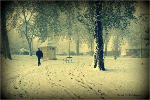 dans la solitude de l'hiver