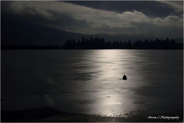 Le lac gelé...; suite 1/4 Ombre & Lumière