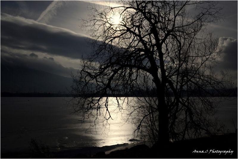 le Lac gelé....;  2/4 Ombre & Lumière sur le lac