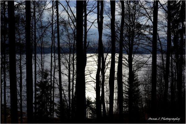 Le lac gelé....; 4/4 Ombre & Lumière sur le lac