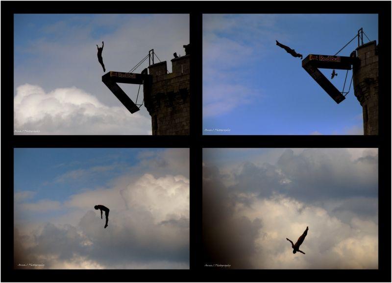Fais comme l'oiseau