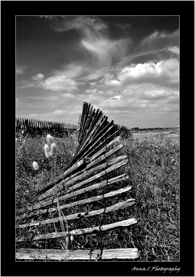 Fence on the ground
