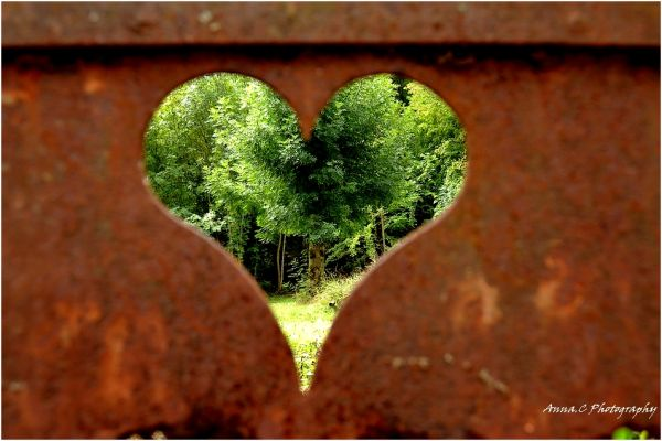 Un coeur de verdure