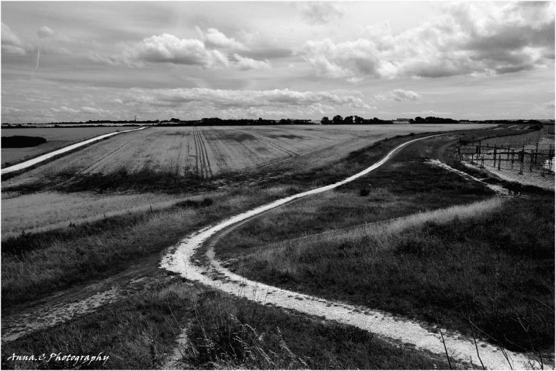 les petites routes blanches à travers champs