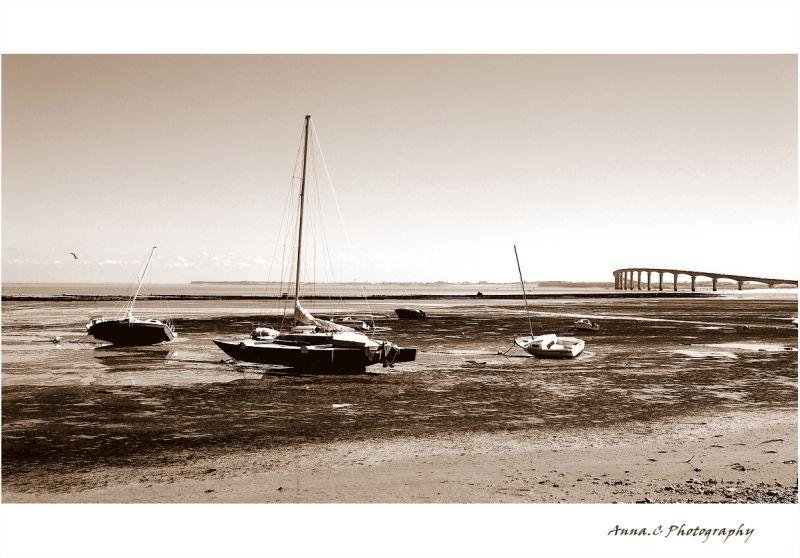 marée basse # 1