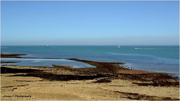 marée basse # 3