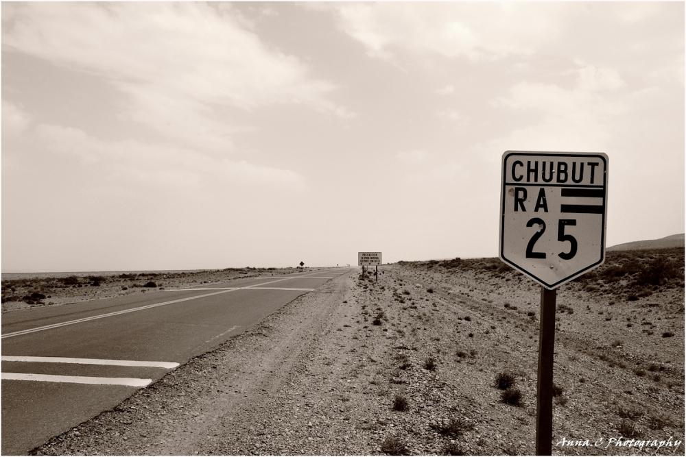Road-trip # 8 - Ruta 25