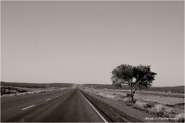 Road trip # 9 - yo soy el solito