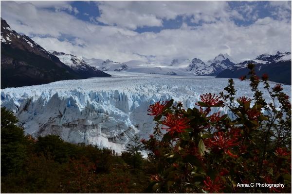 Le Perito Moreno, le géant de glace