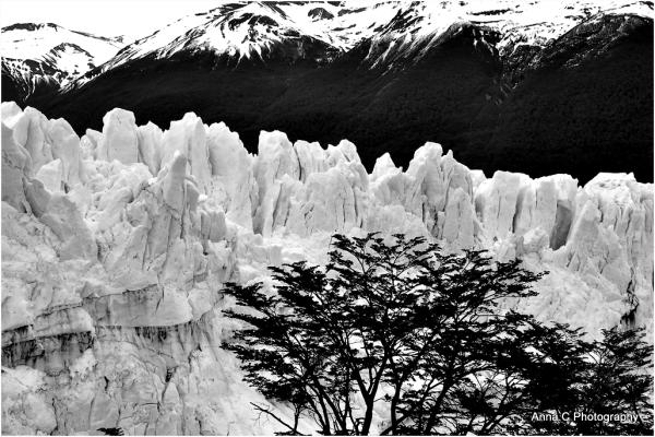 Perito Moreno   le yin et le yang