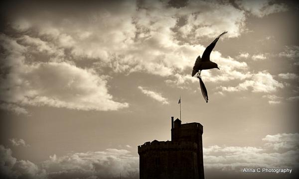 Atterrissage imminent à  La Rochelle