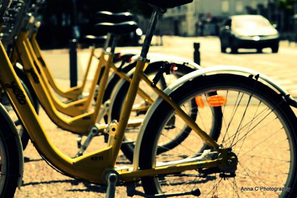 Vélo Yélo ou voiture, il faut choisir !