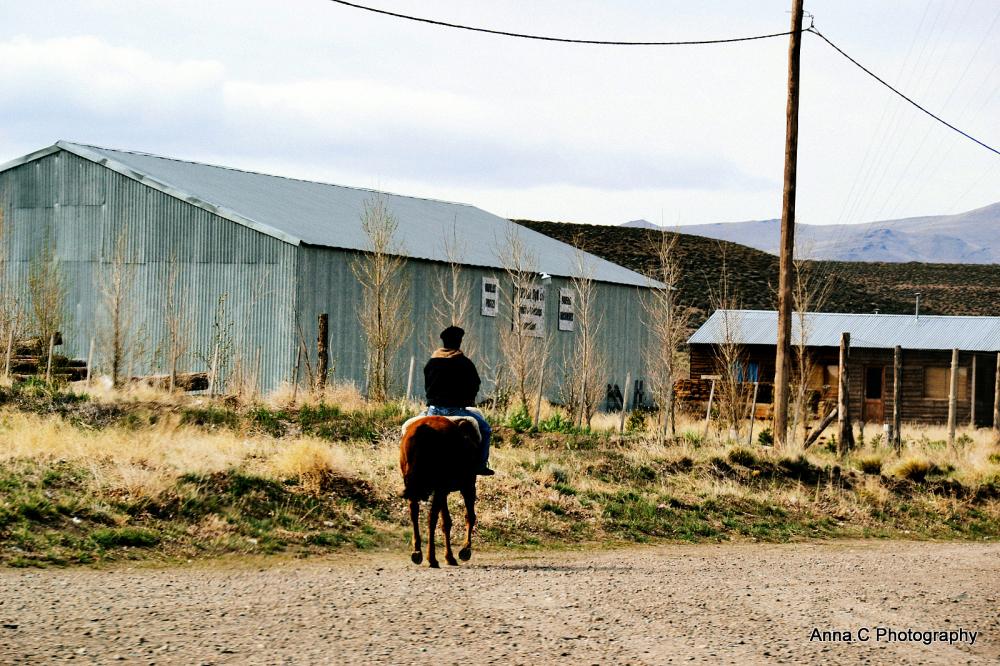 Poor lonesome cowboy