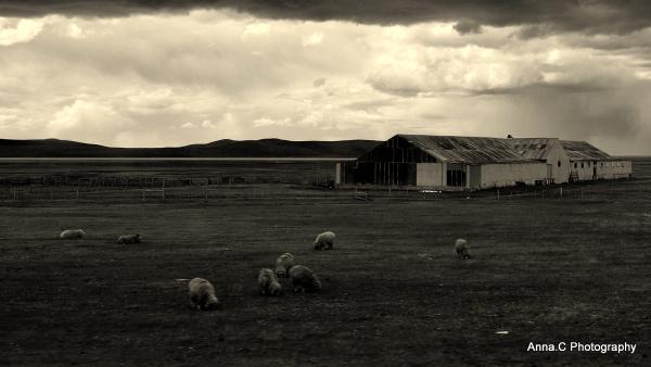 Tierra del Fuego # 2/6