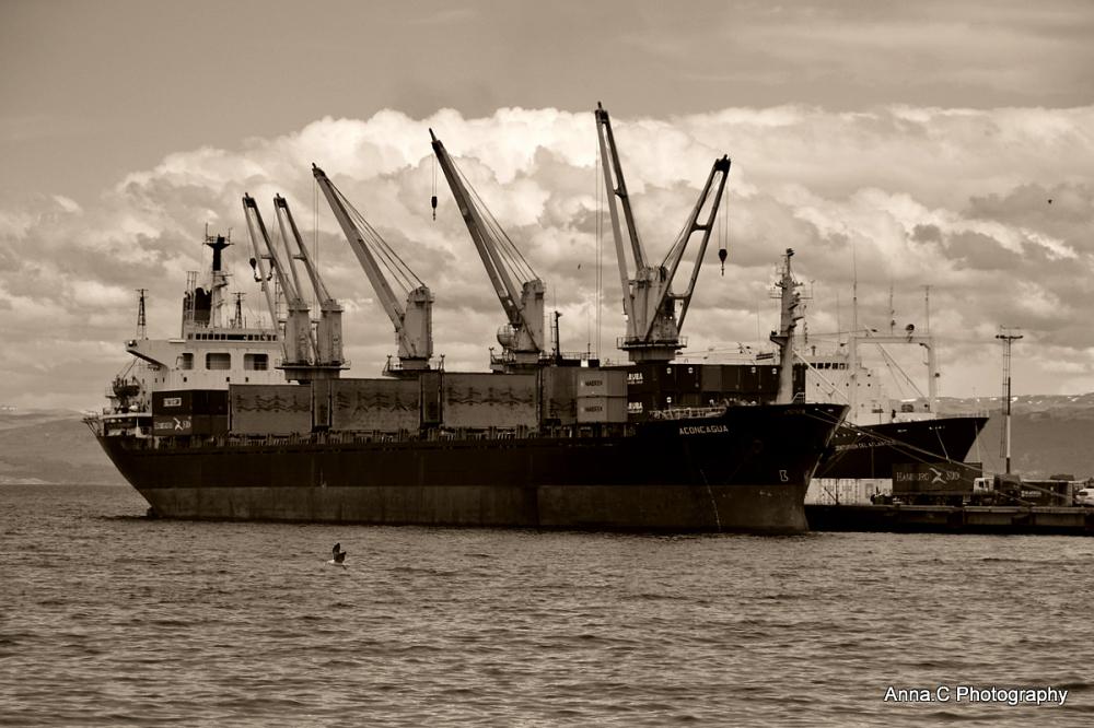 Ushuaia - Fin del Mundo # Retour au port