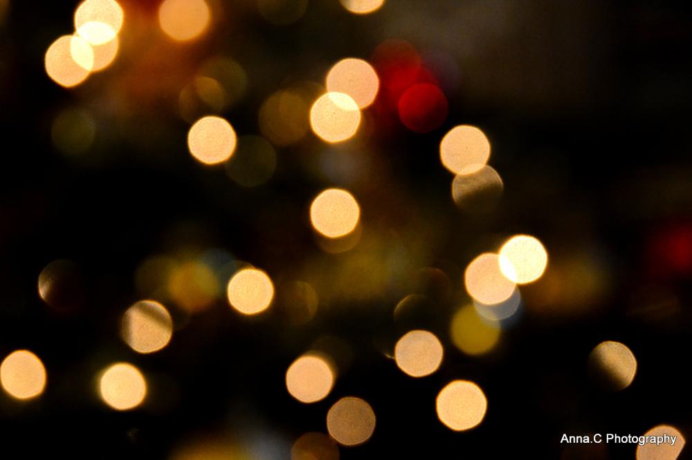 Christmas Lights *** Merry Christmas ! Joyeux Noël