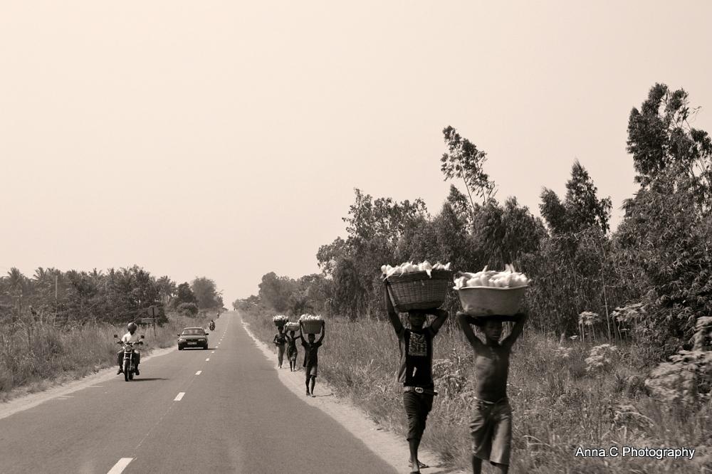 Sur la route de Kpalimé # 2