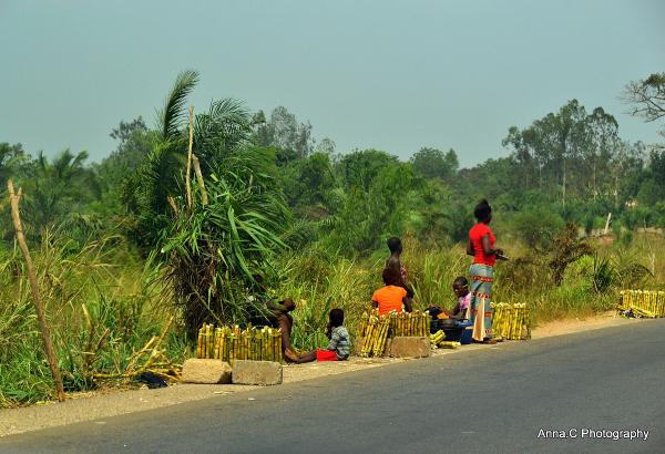 Sur la route de Kara - vendeurs de canne à sucre