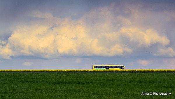 Couleurs de nos campagnes # 6 - Bus écologique