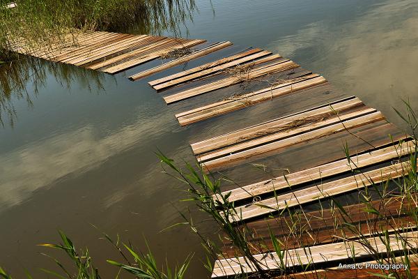 Marcher sur l'eau