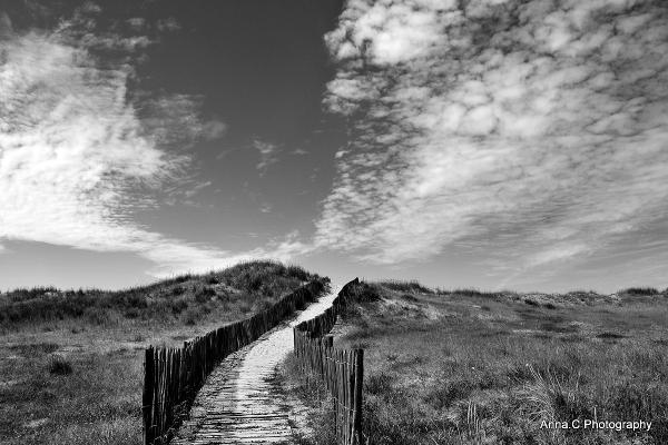 Chemin de dune