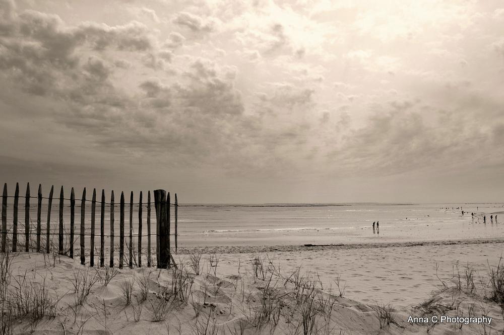 Douceur de dune # 3