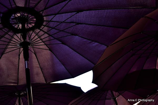 Sous les parasols de l'été