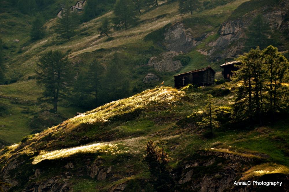 Lumière sur la colline