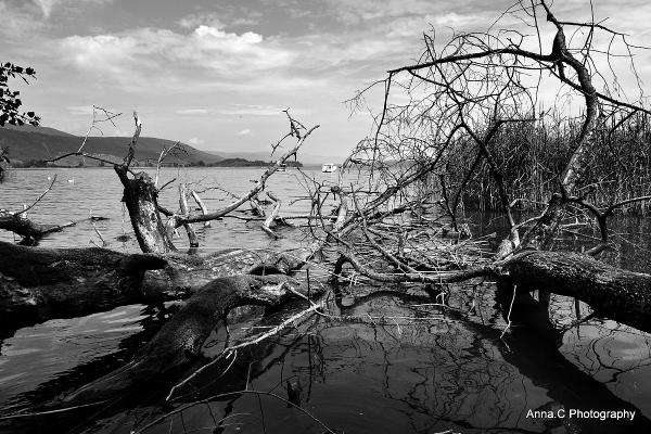 Les secrets du lac # 2