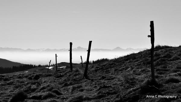 Les montagnes à l'horizon