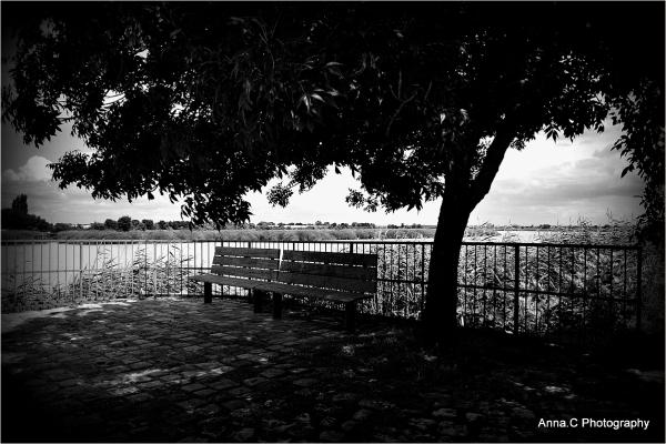 Un banc à l'ombre