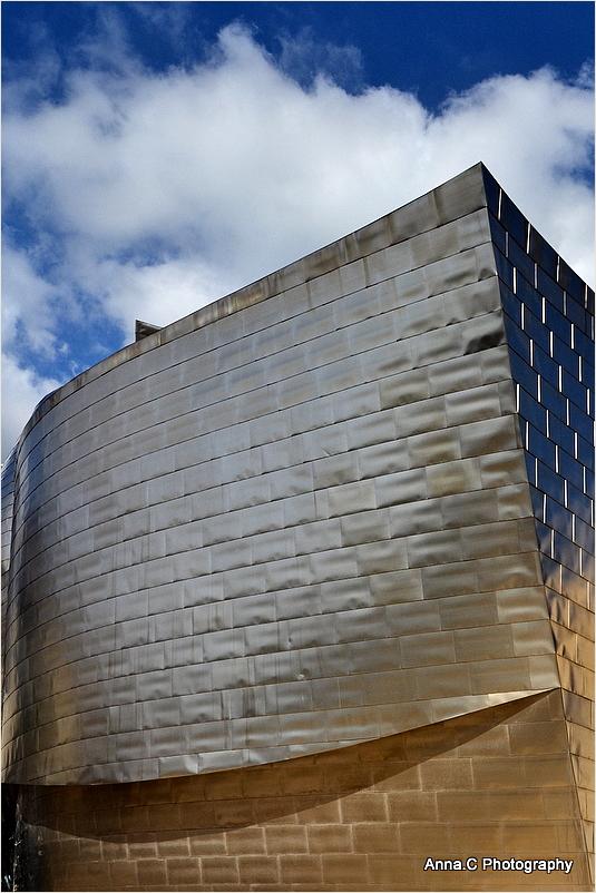 Guggenheim Bilbao # 5 - Proue