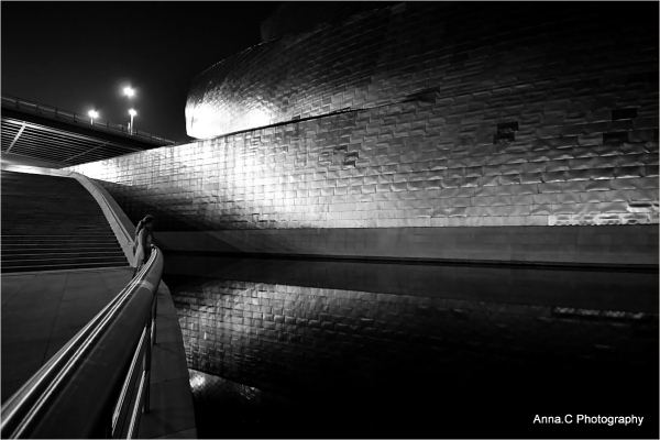Guggenheim Bilbao # 40 -  by night