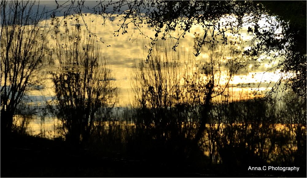 Les derniers reflets du soleil
