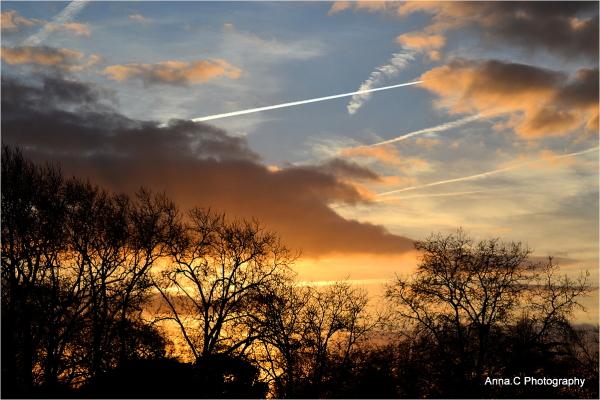 My evening sky