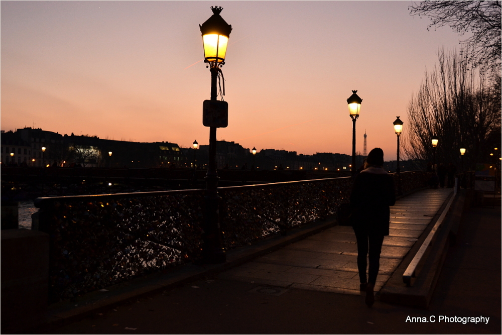 Twilight on Paris