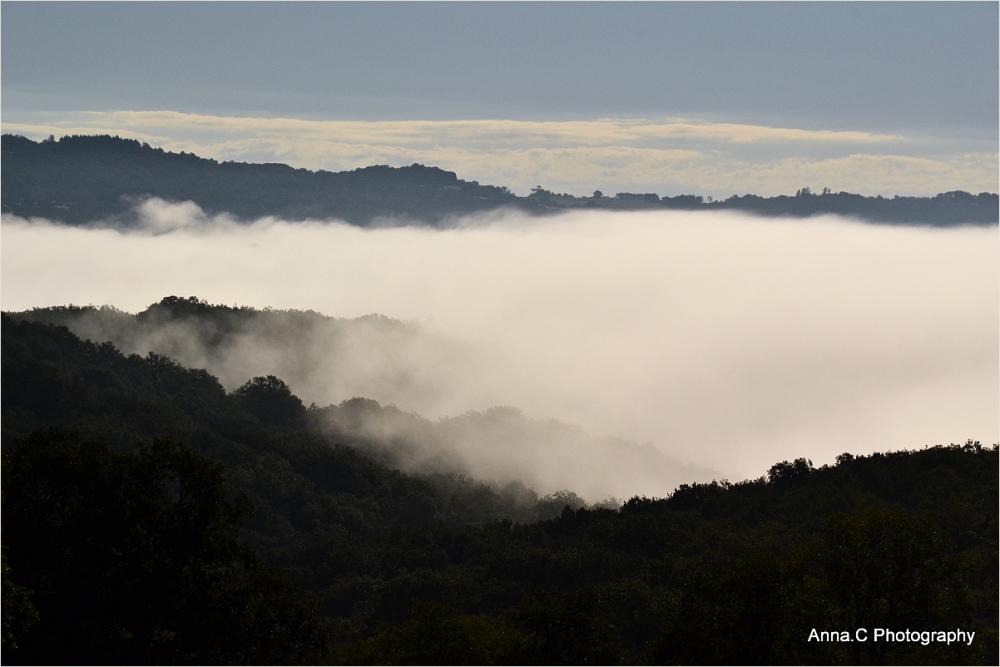 Brume dans la vallée # 2