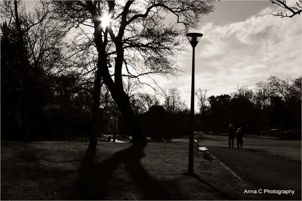 Balade hivernale dans les parcs