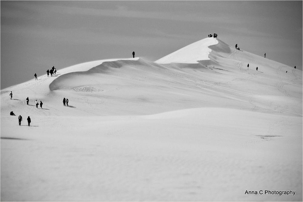 Sur la grande dune