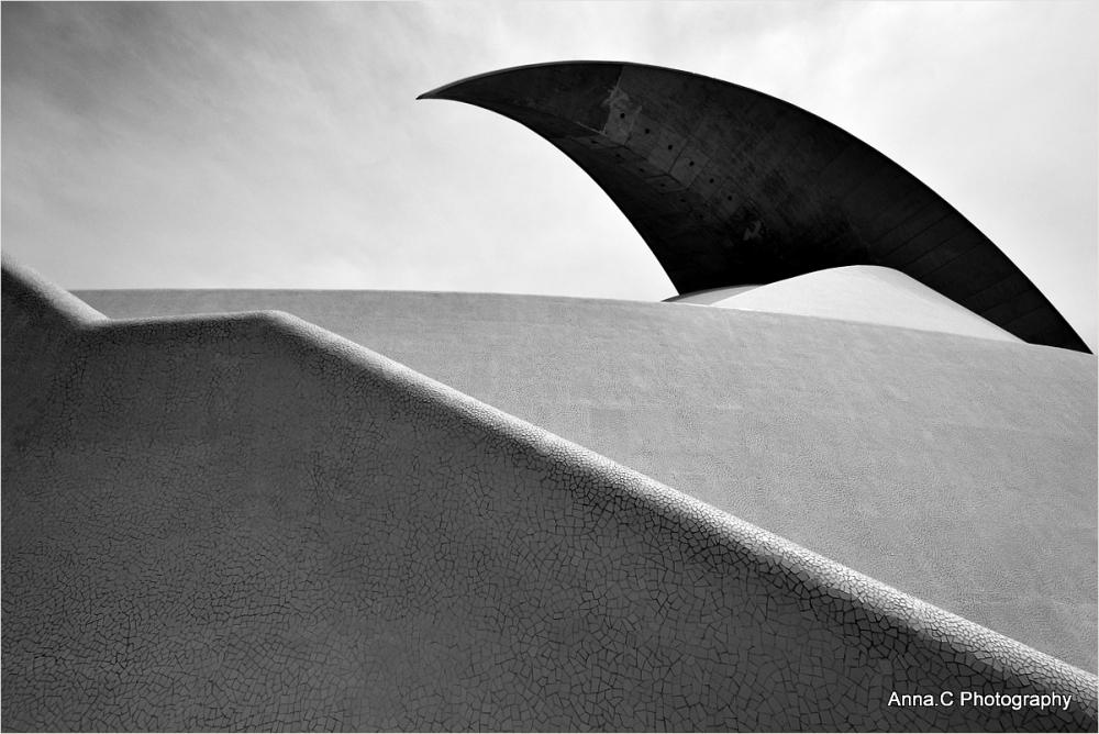 L'aileron de requin