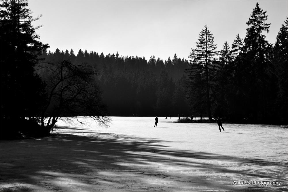 La valse des patineurs de l'étang de la Gruère