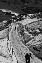 Sur le chemin de la Petite Scheidegg