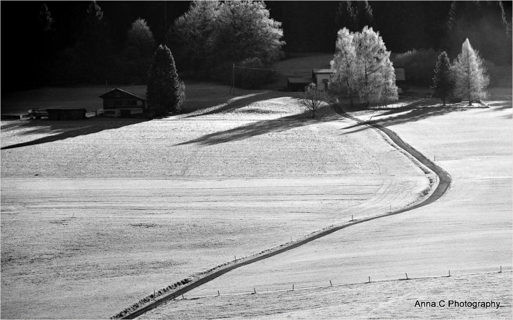 La petite route entre les champs gelés