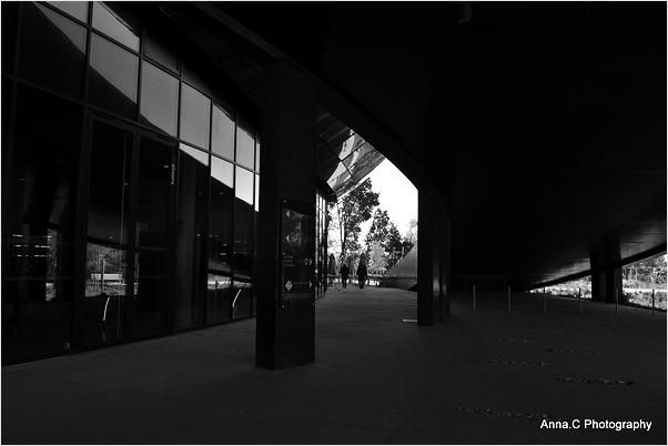 La Cité du Vin # 2 - les dessous sombres