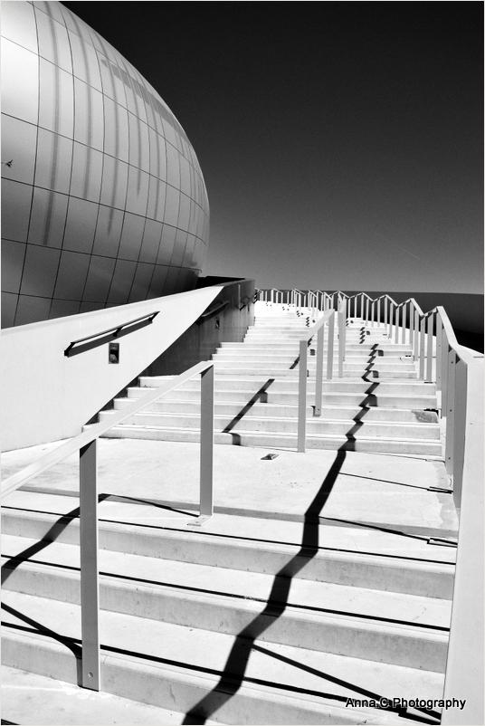La Cité du Vin # 4   Le grand escalier