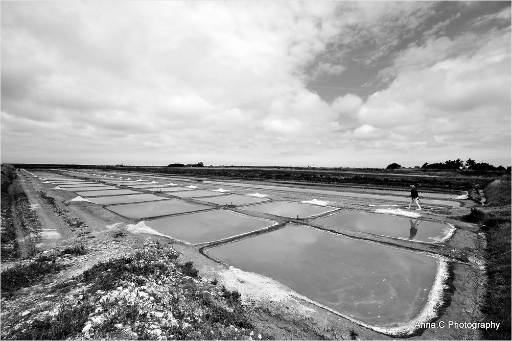 La photographe dans les marais-salants